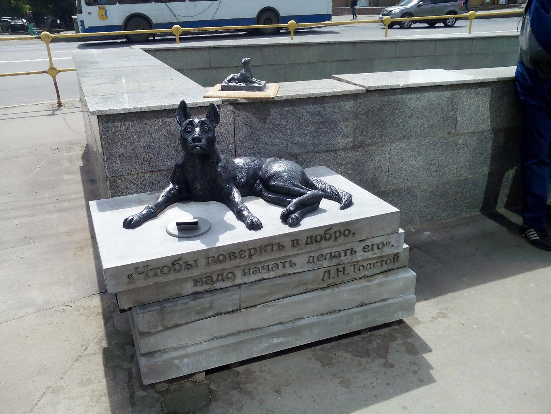 Памятник-копилка бездомной собаке, Киров (Кировская область)