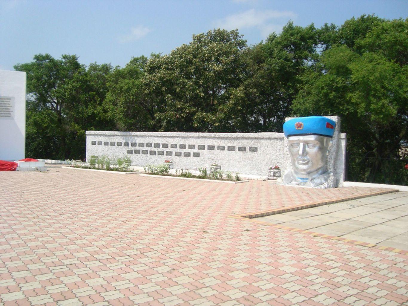 Памятник воинам - Афганцам, Лесозаводск