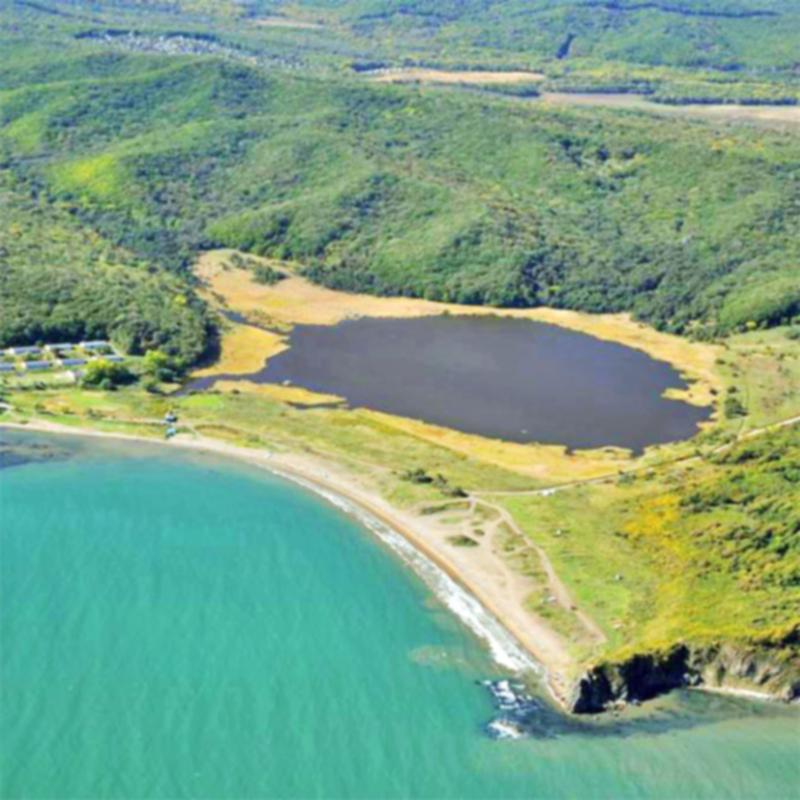 Озеро Черепашье, Артем