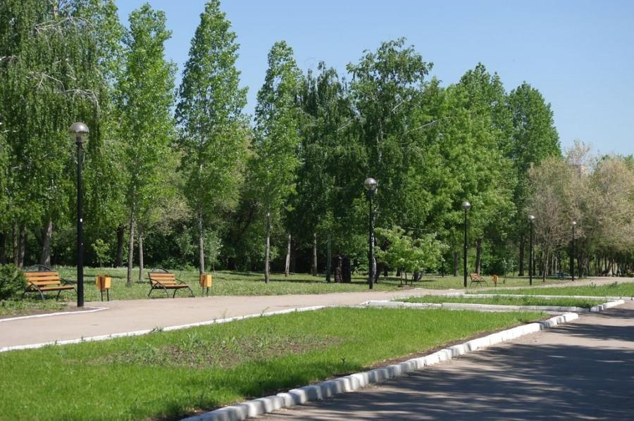 Парк Молодежный, Белово