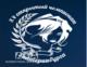XV Открытый Чемпионат г. Екатеринбурга по парикмахерскому искусству, декоративной косметике и нейл-дизайну